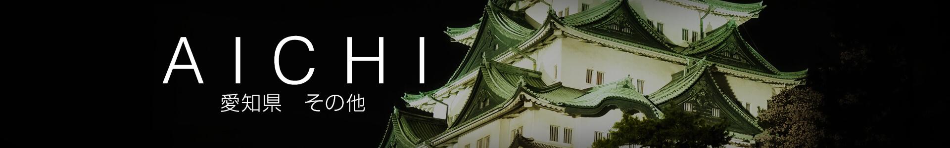愛知県その他